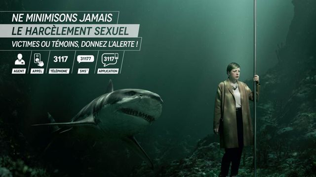 ratp requin